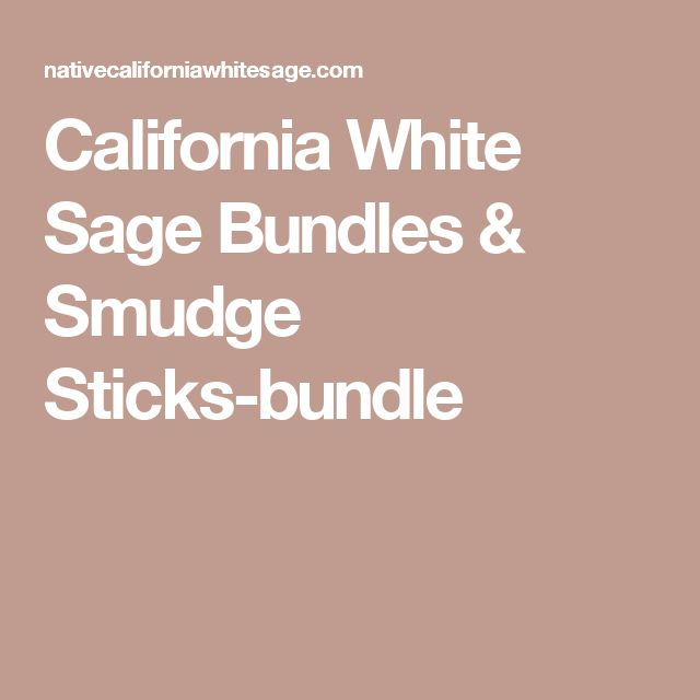 California White Sage Bundles & Smudge Sticks-bundle