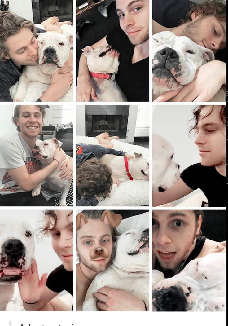 Luke and his adorable bulldog, Petunia