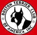 love boston terriers....best dogs