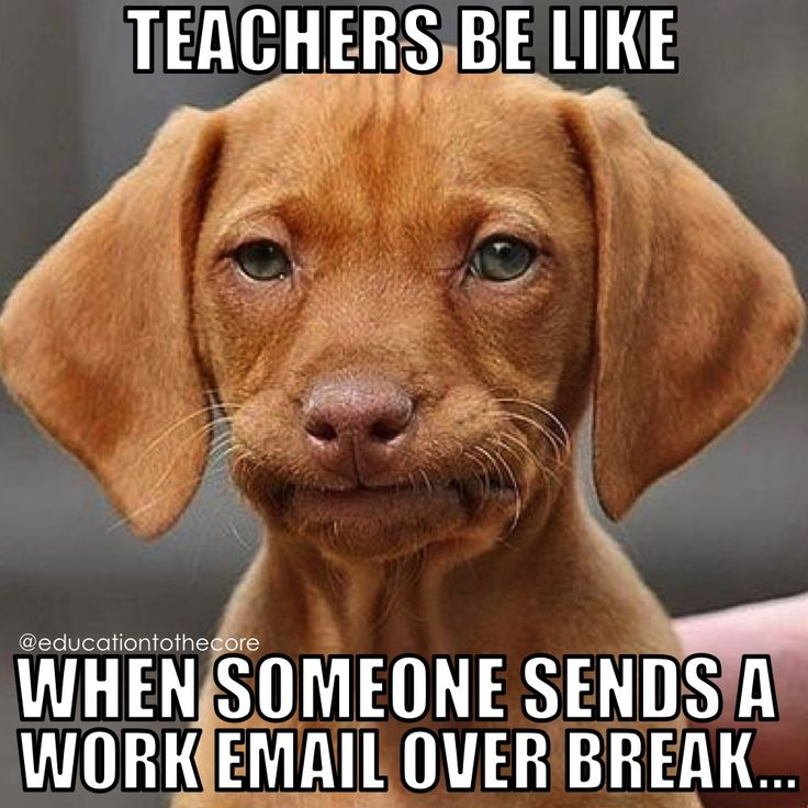 When someone sends a word email over break...