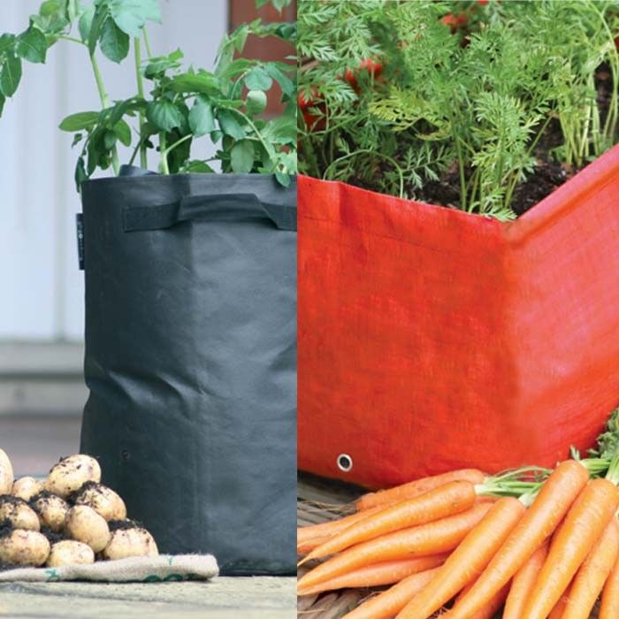 Patio Planter Pack   Simply Add Approx. 48ltrs Of Compost And 3 5 Seed