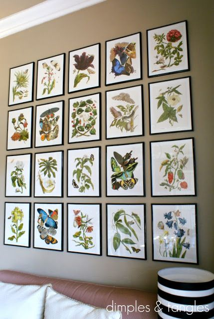 "Botanical Gallery Wall. 20 - 11x14"" Frames from Michael's, 2-pack for $7.99. Pages cut from http://www.amazon.com/Botanicals-Butterflies-Leslie-K-Overstreet/dp/275940269X/"