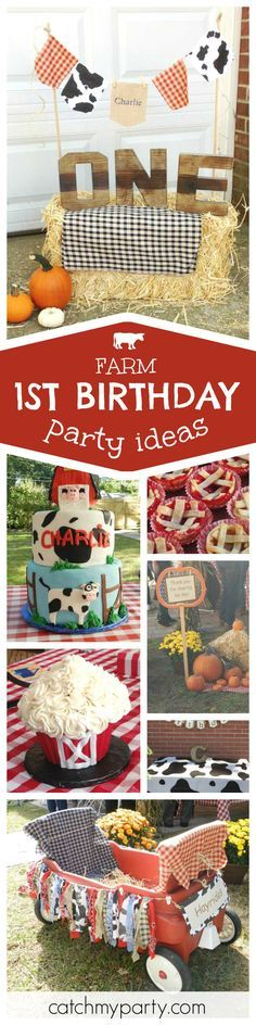 Check out this cute farm themed 1st birthday party! The birthday cake and smash cake are adorable! See more party ideas and share yours at CatchMyParty.com