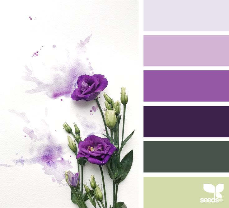 Flora Hues - https://www.design-seeds.com/studio-hues/collage/flora-hues-35