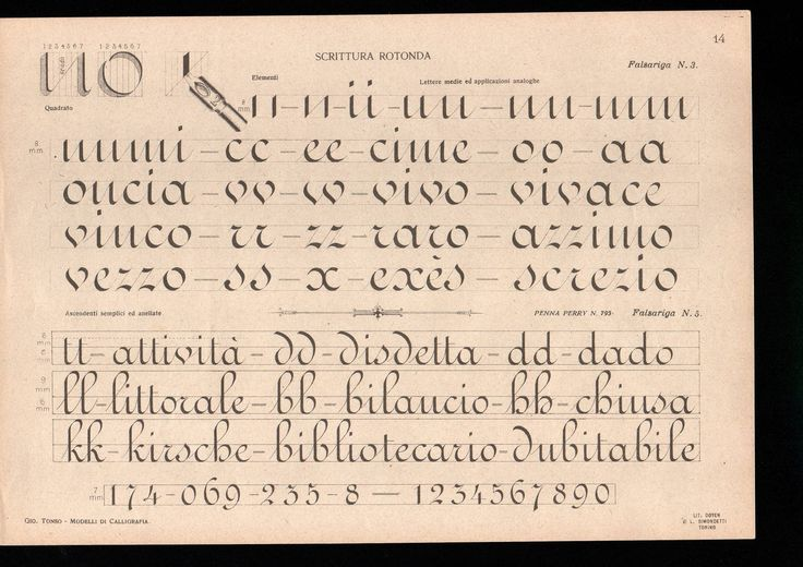 """""""The plates on ronde from Prof. Giovanni Tonso's """"Modelli Di Calligrafia"""", which was originally published in 1898"""""""