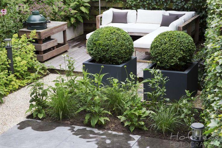 Dit project is mogelijk gemaakt door: Disberg design tuinen. www.disbergtuinen.nl
