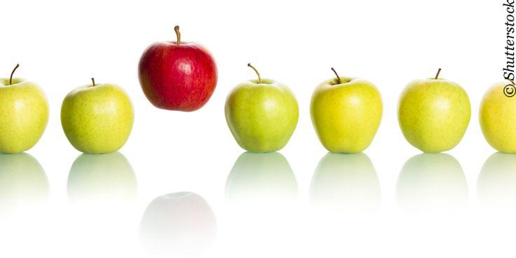 Multikanal und neue Beratungsformen für mehr Kundenzufriedenheit