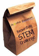 Starfish Education: The Brown Bag STEM Challenge- 10 Project Ideas for Engaging STEM Projects