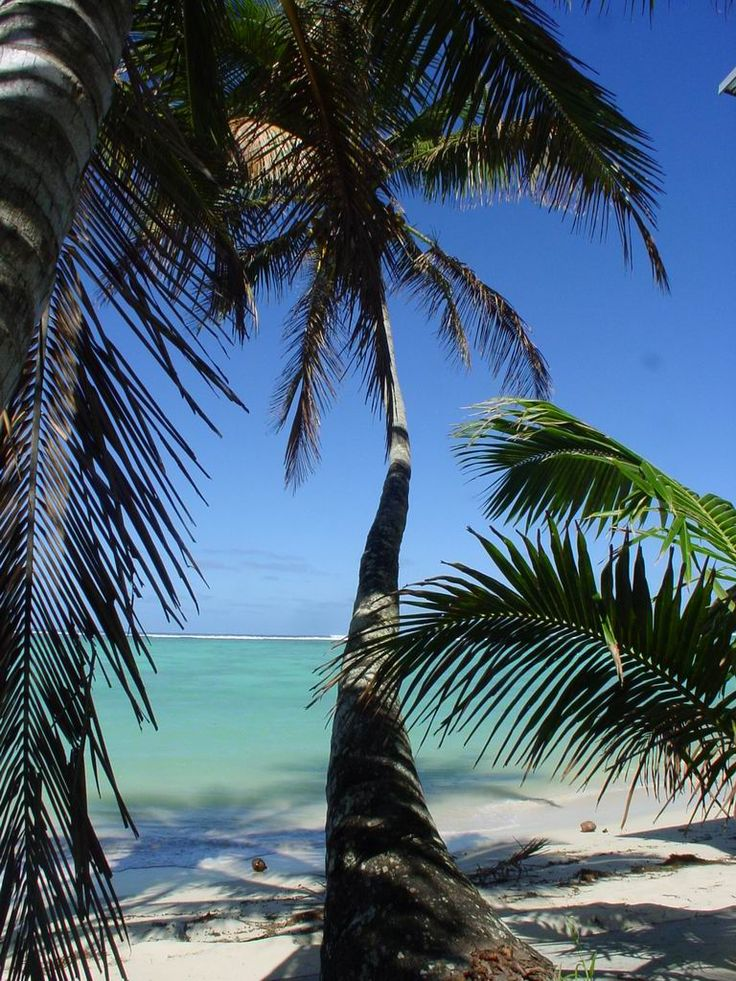 Rarotonga is awesome. I wish I was sitting on a beach over there right now