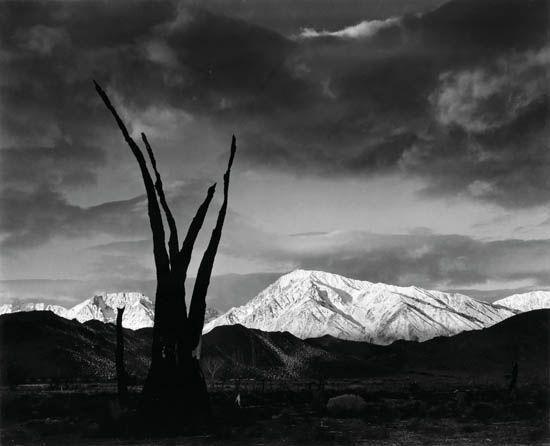 Ansel Adams  Il canto delle nuvole  20 Aprile - 15 Giugno 2012  Lugano