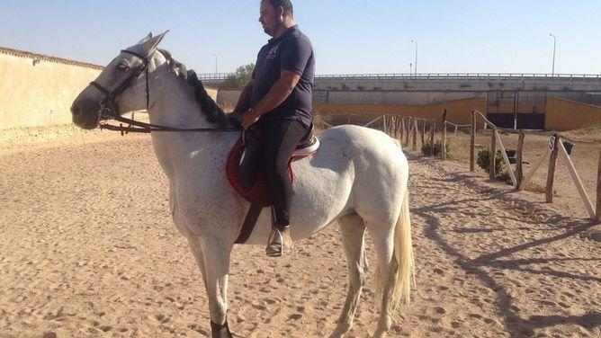 Venta de caballos, ponis, potros y yeguas. Busca y encuentra gran variedad de caballos en venta en Castilla-La Mancha, el portal líder en España en compra y venta de caballos.