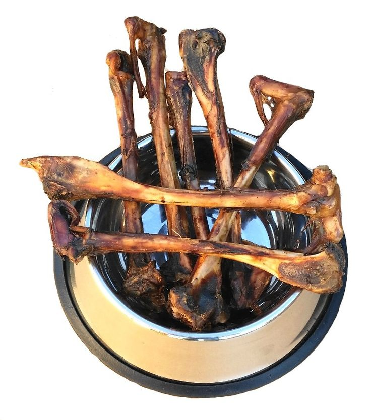 Kość Promieniowa Sarny 1szt.