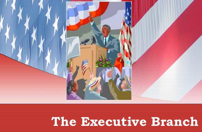 1000 Images About Teach Social Studies With Me On: 1000+ Ideas About Executive Branch On Pinterest