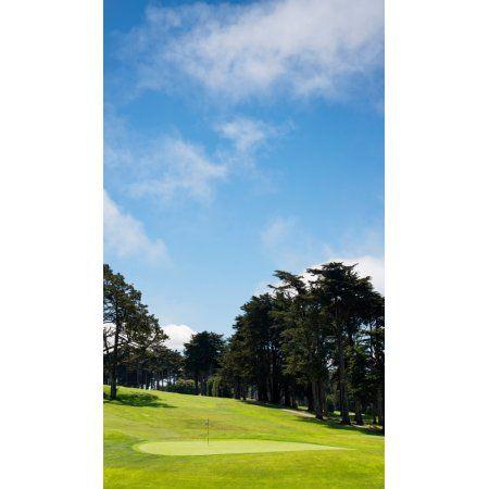 Trees in a golf course Presidio Golf Course San Francisco California USA Canvas Art - Panoramic Images (16 x 9)