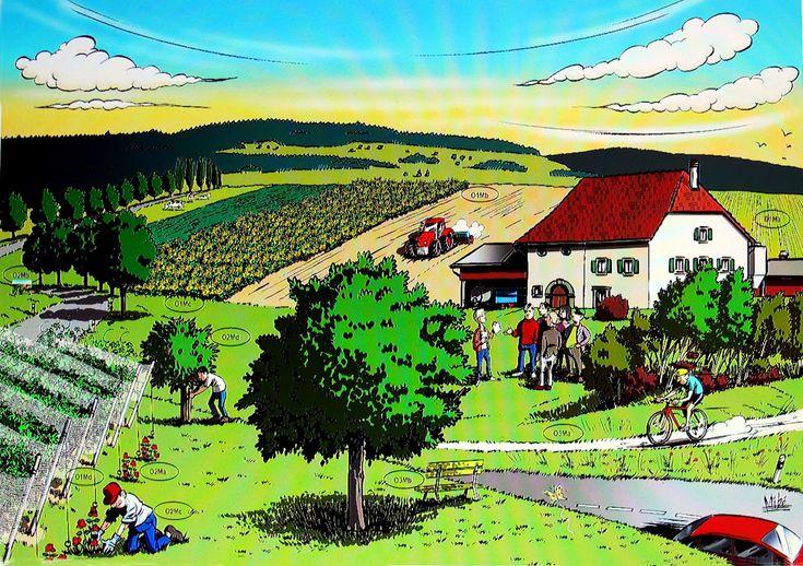 Les paysages ruraux la classe de stefany cycle 3 for Le paysage