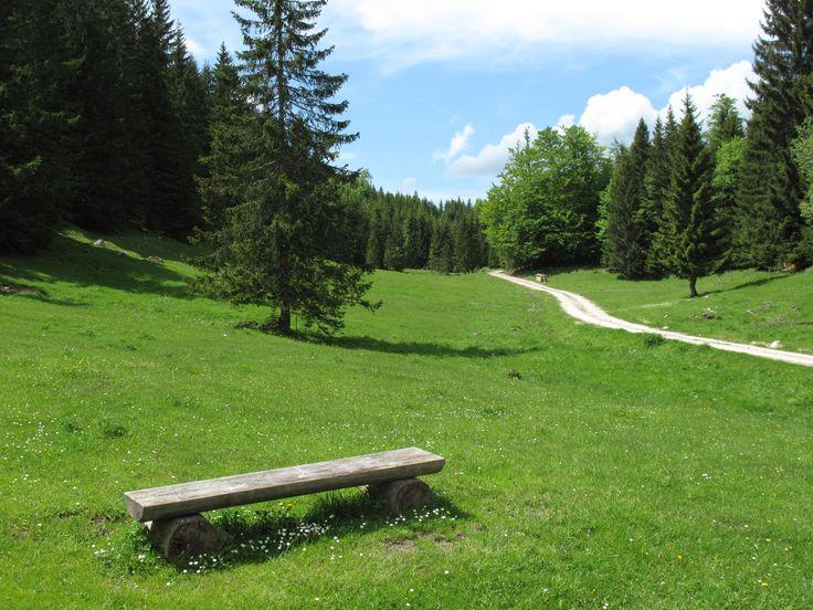 Wandern im schönen Rußbach #salzburgerland #österreich #wandern