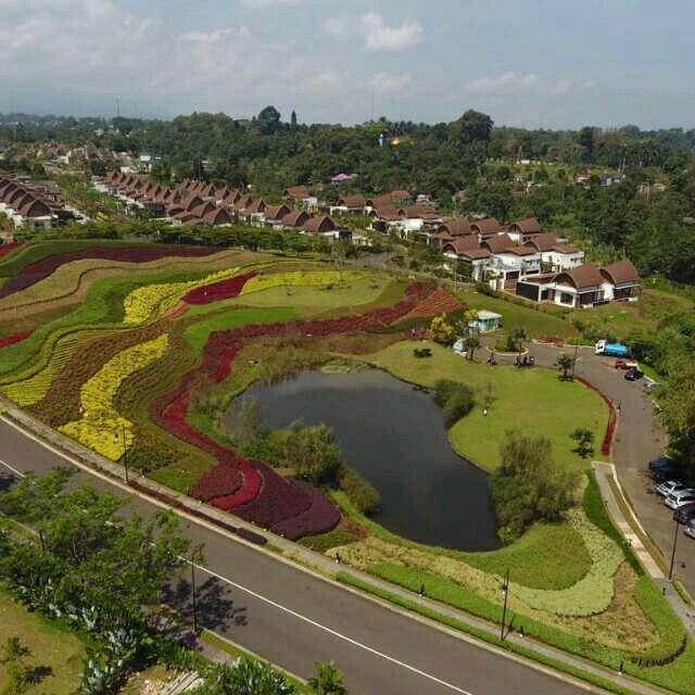 Flowers Hill, Vimala Hills