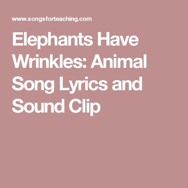 Elephants Have Wrinkles:  Animal Song Lyrics and Sound Clip