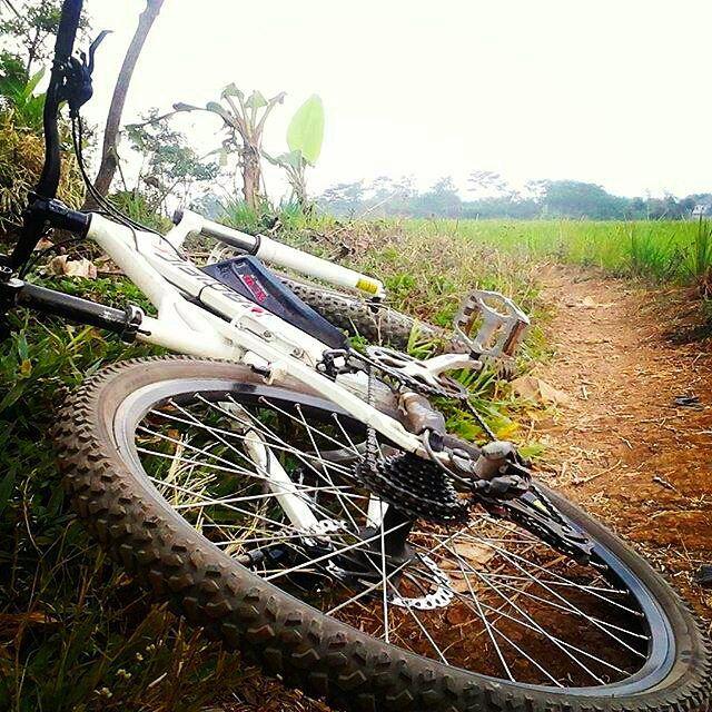 ah... sudah pagi saja :D yuk bersepeda dulu sebelum bekerja :) atau kalau yang mau bike 2 work hati-hati di jalan yaaa   photo by @noval6677 #pacificbikerider #pacificbikes #mountainbike #mtbindonesia #sepedagunung #sepeda #bersepeda