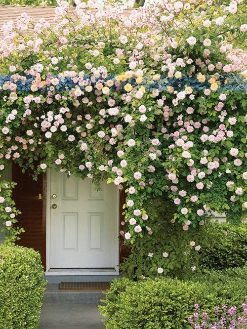 might have to duck to get in... oh the secret garden look, i will never get tired of it!