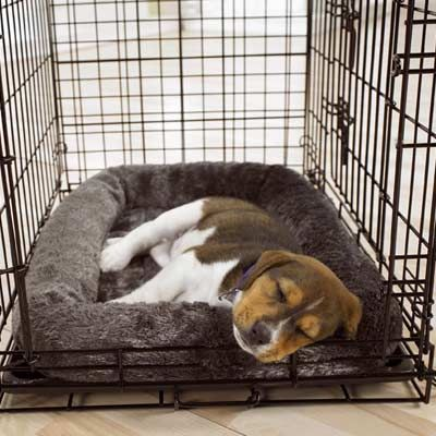 Crate Training For Puppies The quickest and most advised way to train your new puppy is using the crate training method. Dogs in the wild would be used to having a small safe place to themselves, which is why crate training works so well. This method is advised by vets and training specialist