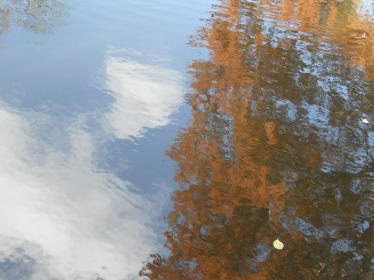Lake Photo: Beata Bauer