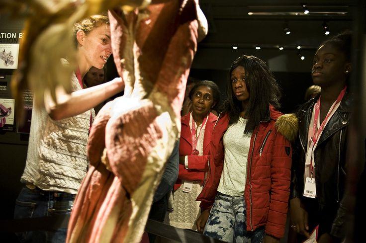Tijdens het Weekend van de Wetenschap op 4 en 5 oktober konden kinderen van 7 tot 15 jaar op onderhuids avontuur bij BODY WORLDS Amsterdam. #wetenschap #WvdW #BODYWORLDSAms