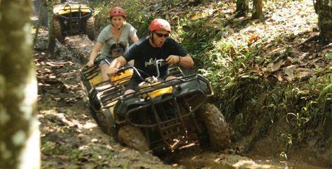 Bali Tours Adventure | Komodo Tours | Komodo Tour Packages | Flores Komodo Tours