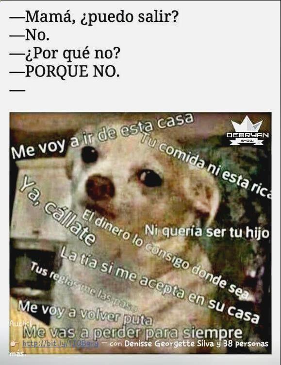 ッ Ríe a carcajadas con cadenas de chistes de pepito para whatsapp, videos de humor para adultos, paginas de imagenes graciosas para facebook yahoo, memes bipolar y chistes de jaimito argentinos. ➛➛ http://www.diverint.com/memes-chistosos-pan-pan-vino-vino/