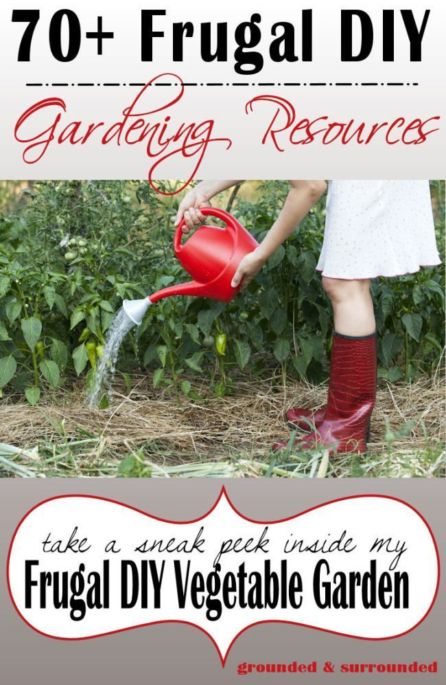 13 Reasons to Grow a Vegetable Garden.