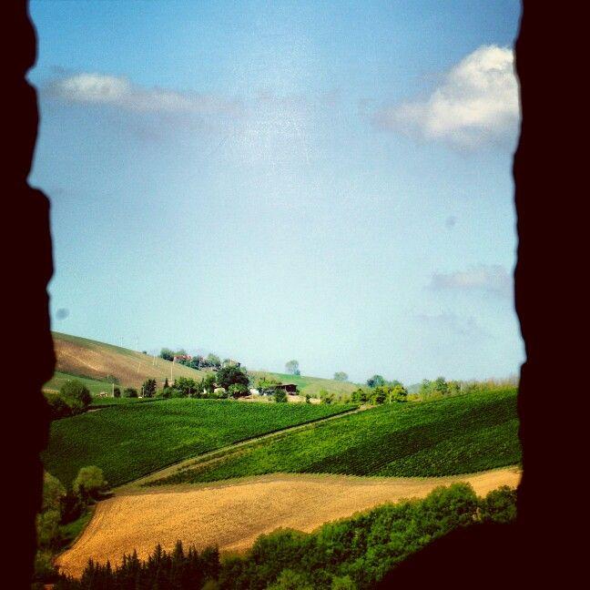 Particola del paesaggio da #Poggiocanoso frazione di #Rotella #terredelpiceno #marchetourism #destinazionemarche #piceno #picenopass #marche #dreamingpiceno