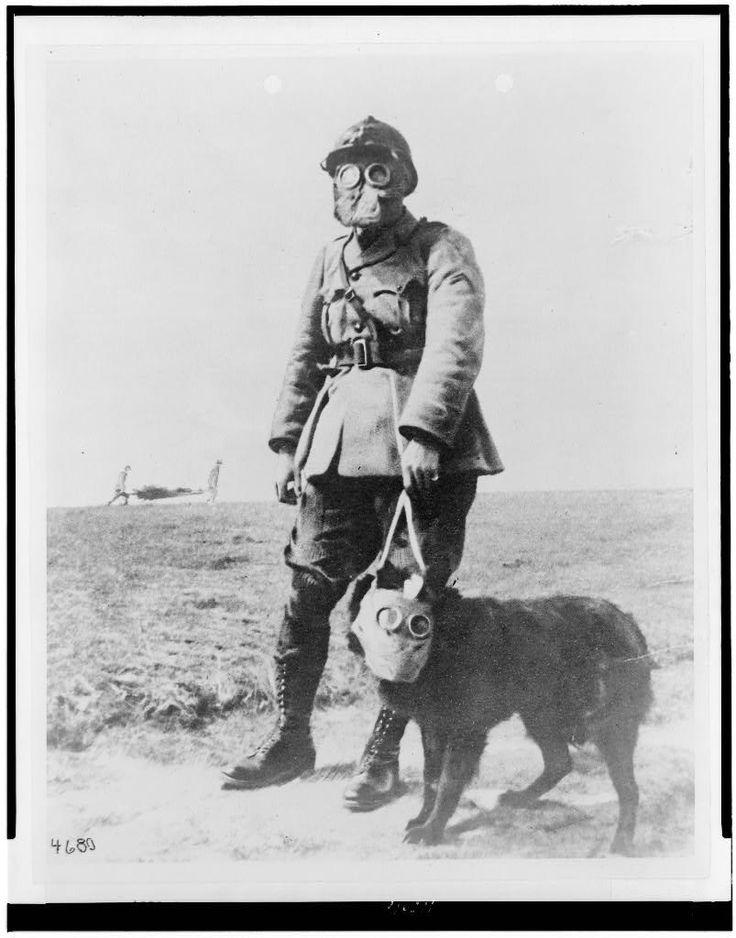 WW1 (19141918) A French sergeant and a dog World war