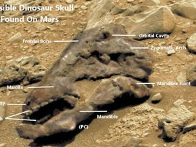 IT HAS been hailed by alien hunters as undeniable proof that huge dinosaurs, like those that used to live on Earth, once roamed the surface of Mars.