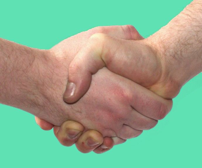 Use this free partnership agreement template to list all partners, their capital contributions to the business, as well as their share of the partnership.