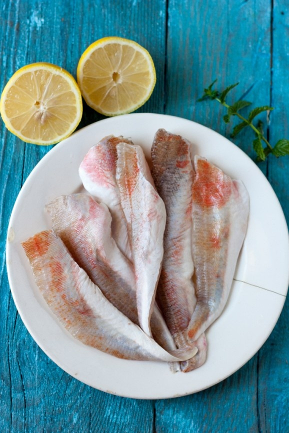 Tub Gurnard Fish Fillets with Herb Dressing