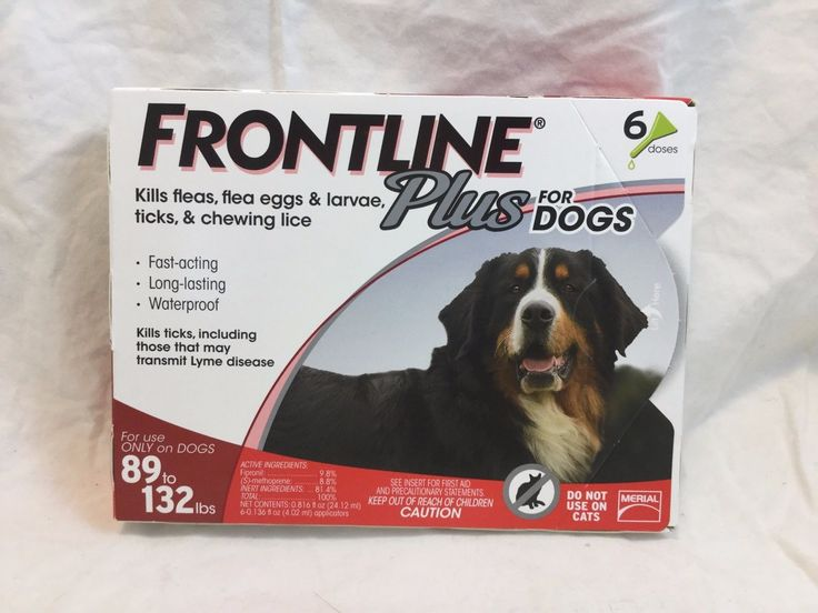 Dog Tick Treatment
