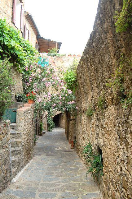 Castiglione della Pescaia ! Province of Grosseto Tuscany