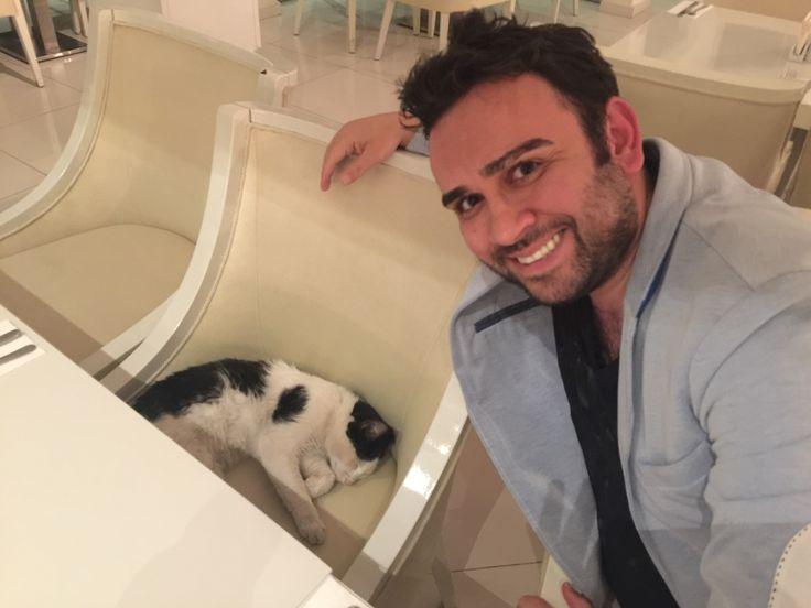Çayımı tazelemek için ayağa kalkmamla beraber anında sandalyemi ele geçirmiş bu sevimli kedi.  Yerimde gözü varmış demek ki😂