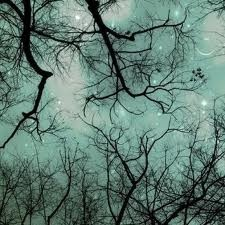 I could totally use this evening sky with branches as a color palatte for a zen bedroom or bath.  Blues, indigos, and whites on the walls and dark wood furniture pieces with actual branch accents...like the night sky!