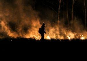 МЧС призывает: строго соблюдайте требования пожарной безопасности, исключите посещение лесов, разведение костров, проведение пала сухой травы, камыша и мусора http://34.mchs.gov.ru/pressroom/news/item/4067903/  В регионе в самом разгаре летний пожароопасный период. Как показывает практика, именно сейчас пожары могут развиваться стремительно и непредсказуемо. Учитывая климатические особенности нашей области, высохшая на солнце растительность уже стала «бомбой замедленного действия», когда…