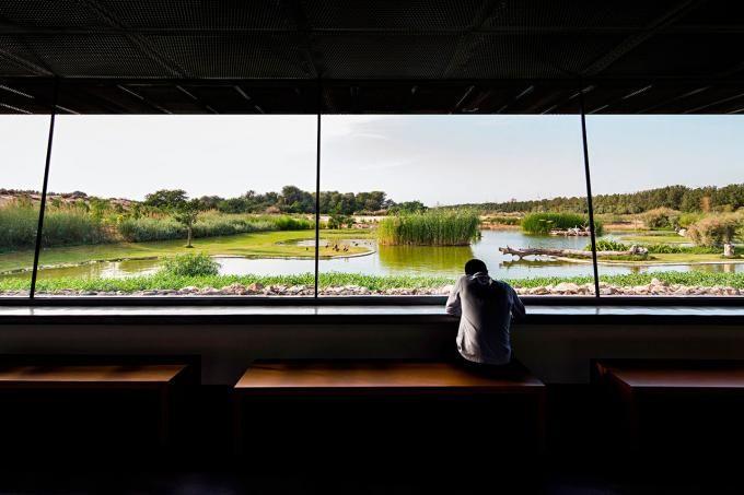 Zona de observación. Centro de Observación de aves por X-Architects. Fotografía © Nelson Garrido.