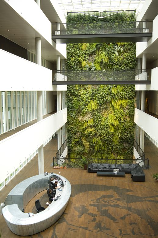 Top 25 best office building lobby ideas on pinterest for Architecture vegetale