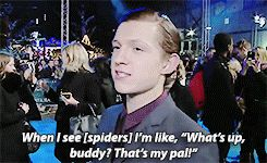 Ya no.... He hates spiders and is terrified of them but that's tricking adorable that he says that!