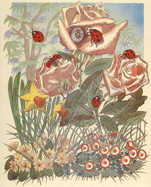 Mejores 9 imágenes de ladybug en Pinterest   Mariquitas, Charley ...