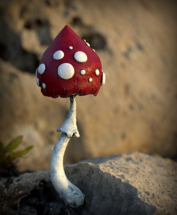 Hey, I found this really awesome Etsy listing at https://www.etsy.com/uk/listing/243747797/reserved-for-jo-red-white-amanita