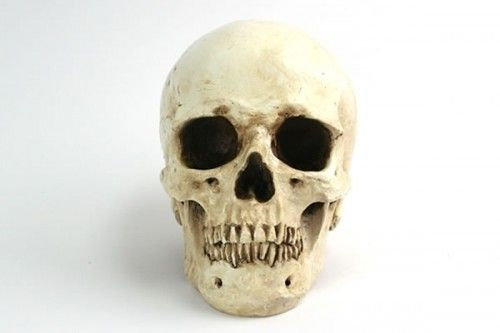 Yorick's skull is a major part for family because he viewed him as so grand and then realized when he saw his skull that when we die, we are just another person and are all worth the same thing when we die.