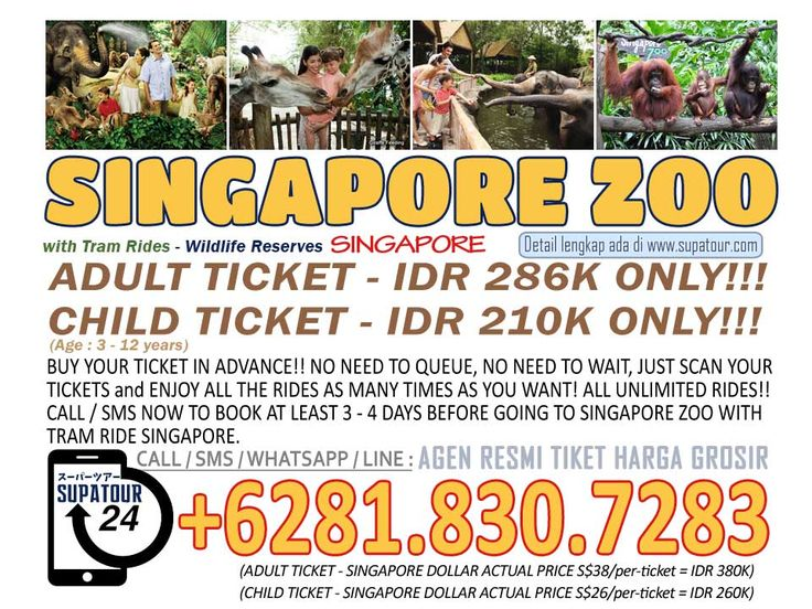 Singapore Admission Ticket Singapore Zoo Adult: Rp. 286.000* Child: Rp. 210.000*  For more Info: Supatour and Travel  WhatsApp : +62818307283 http://supatour.com