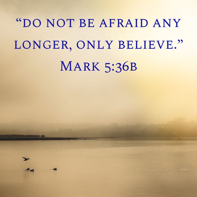 Mark 5:36b | Truth | Bible, Scripture quotes, Quick view bible