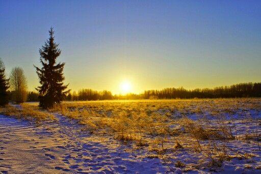 Talvi aurinko