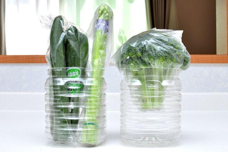 新鮮長持ち!ペットボトルで野菜保存。野菜室もスッキリ | iemo[イエモ]